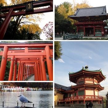 根津神社から上野.jpg