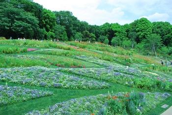 里山ガーデン2.jpg