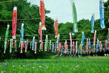 里山ガーデン3.jpg