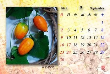 '18.9. カレンダー(2).jpg
