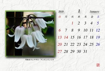 '19.1 カレンダー.jpg