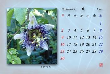 '19.6月カレンダー.jpg