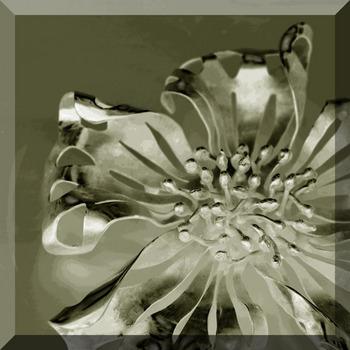 銀の花2.jpg